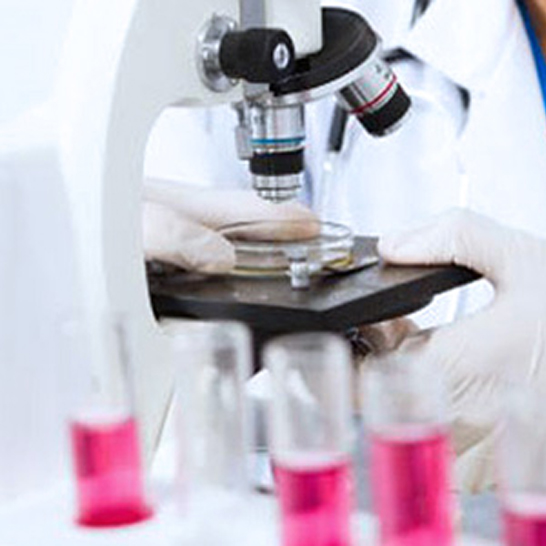 Lab reports made available to patients without hassle.